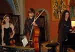 Trio KARENINE 150